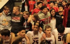 VIDEO: Boys basketball wins in state semifinals