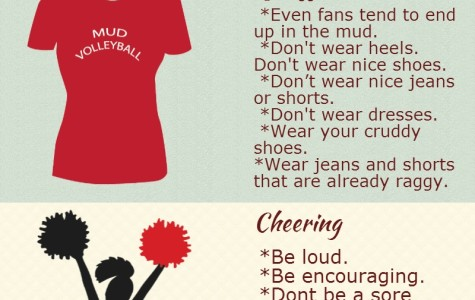 Mud Volleyball Fan's Guide