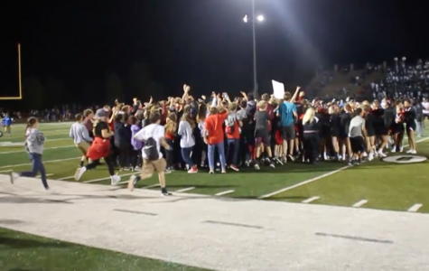 Video: Highlights of Lions football win over Free State