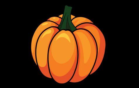 Q&A: Halloween