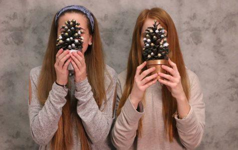 DIY Holiday Tree