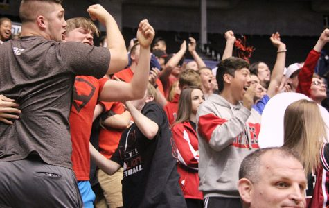 Fans travel to watch the Lions at state
