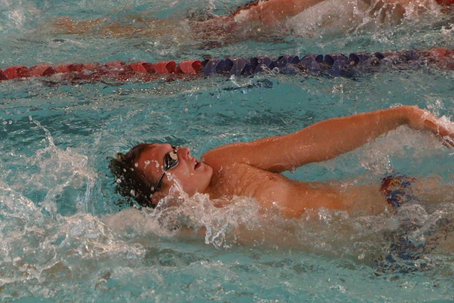 Back in action­ — Senior Stephen Johnson swims the backstroke as part of the team's intra-squad meet in November.