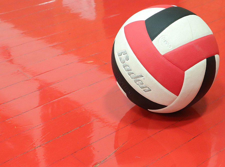 Lawrence+High+students+are+starting+a+volleyball+club.