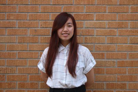 Pam Vue
