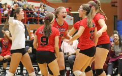 Lions win first game in two sets at state volleyball tournament