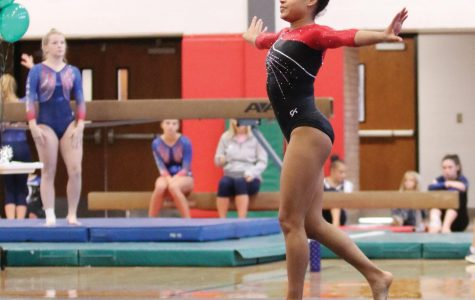 Sophomore gymnast makes herself into a state leader