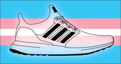 OPINION: Kansas legislature unfairly targets Trans students